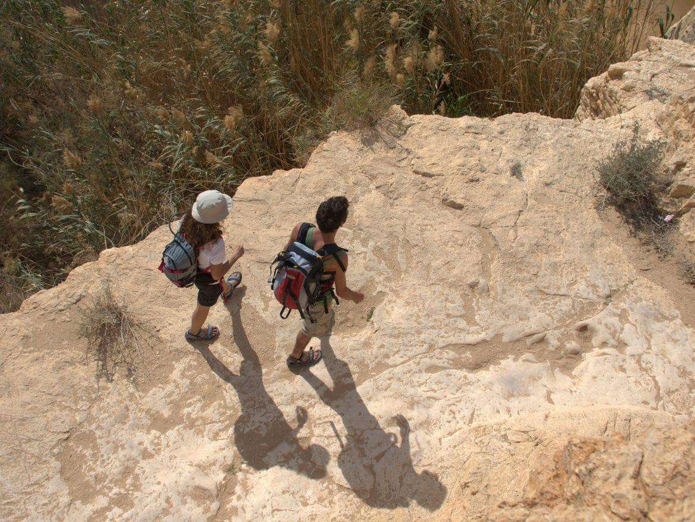 Source Gobi Sandalen auf Fels
