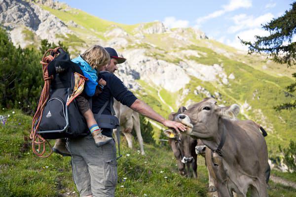 St Anton am Arlberg - Familienwandern mit Kuh