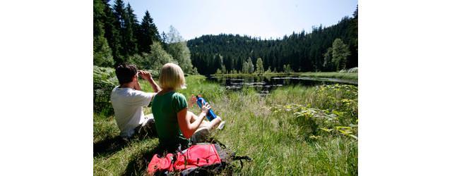 Baiersbronn - Seensteig