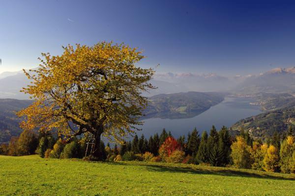 Millstaetter See - Herbststimmung