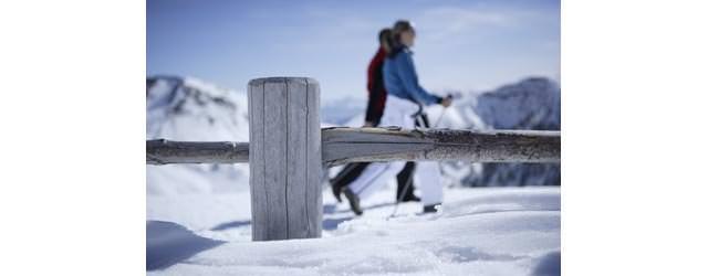 Schenna - Winterwandern