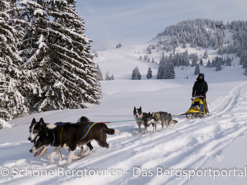 Vaude Schneeschuh Camp 2012 - Huskys in Action