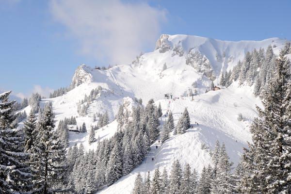 Brauneck Bergbahn - Blick auf den Idealhang