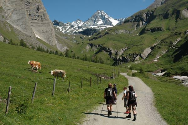 Osttirol - Lucknerhuette