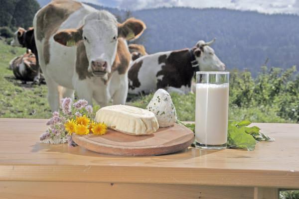 Osttirol - Regionale Speisen direkt vom Bauern
