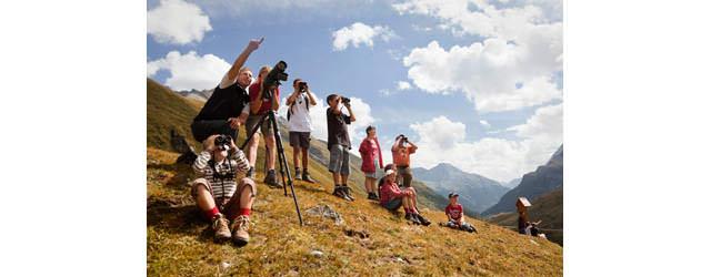 Osttirol - Beobachtungen mit Rangern