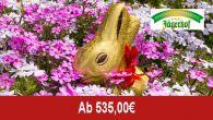 Hotel Jägerhof – Ostern mit Sonne & Schnee… _______________________________________________ Angebotsbeschreibung/Leistungen: Genussvolle Frühlingsgefühle! Angebotspreis: - ab 535,00 Euro (pro Person/Aufenthalt). Übernachtungen: - 7 Nächte (je nach gebuchte Zimmerkategorie unterschiedlich) Region: - […]