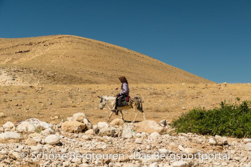 Israel - Beduinen