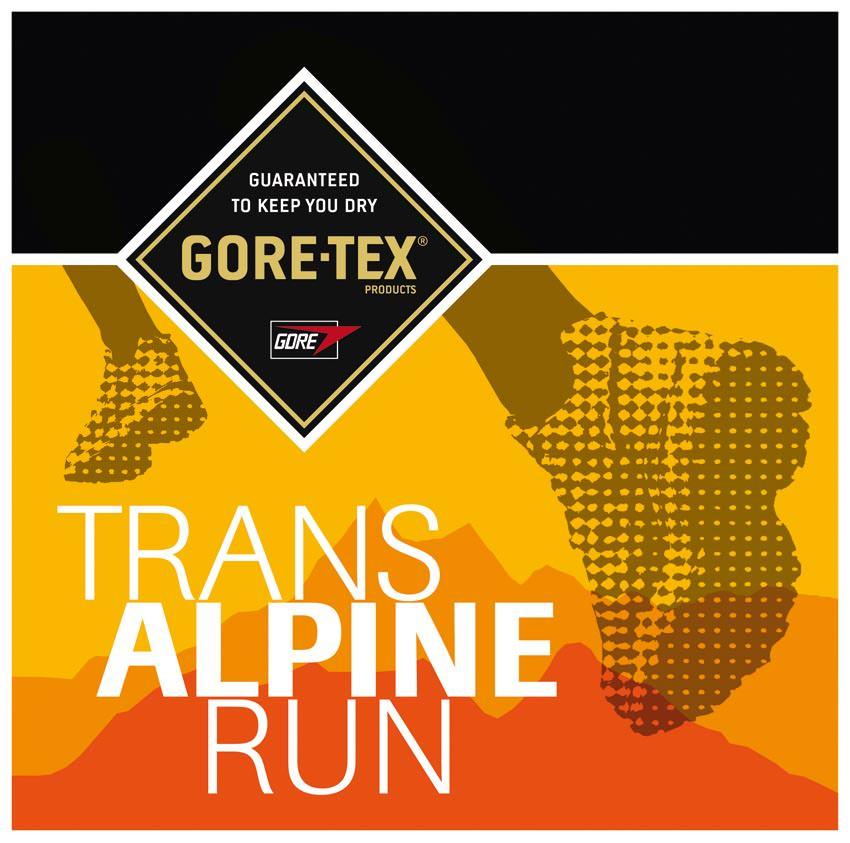 Gore-Tex Transalpine-Run - Logo