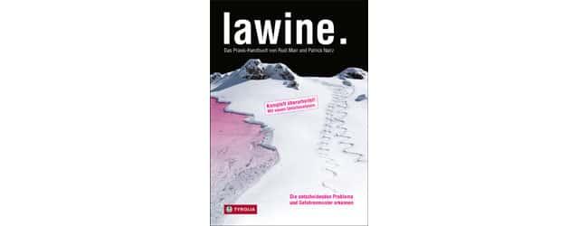 Lawine - Praxishandbuch - Cover