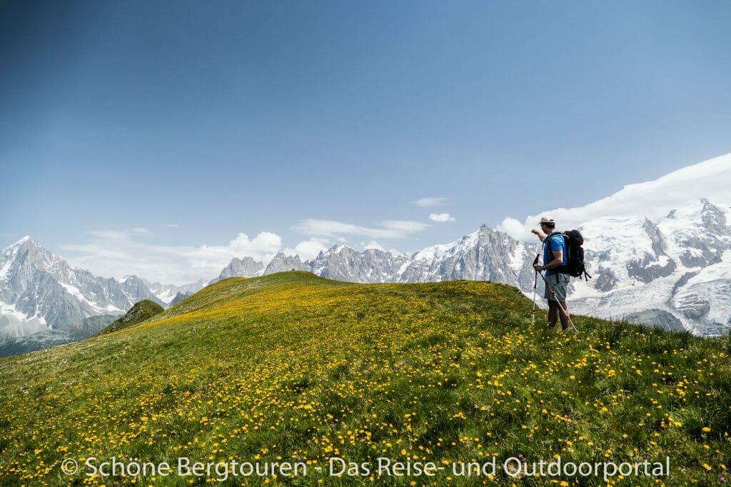Chamonix - Bergwiesen