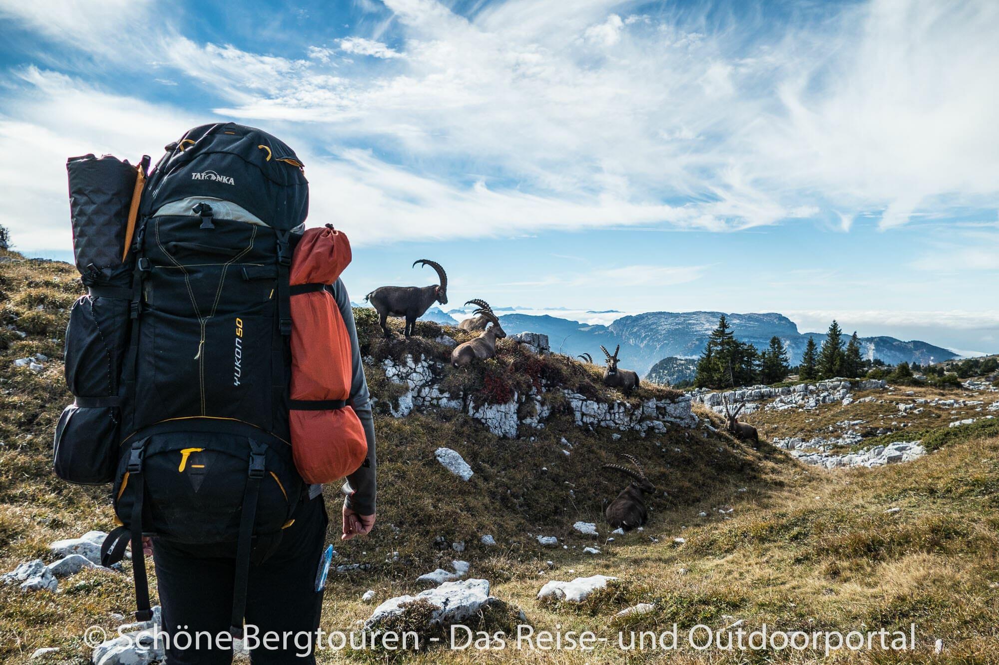 Klettersteigset Testsieger 2018 : Testbericht u2013 tatonka yukon 50 trekkingrucksack praxistest test