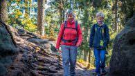 Wandern mit Kindern – Tipps für tolle Familientouren… Ein Familienurlaub, egal ob am Meer oder in den Bergen, will gut geplant sein. Insbesondere wenn Eltern ihren Schützlingen Lust auf das […]