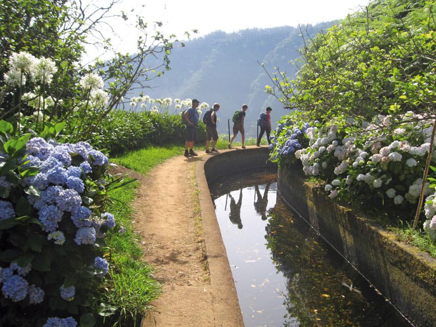 Wikinger Reisen - Levadawandern auf Madeira