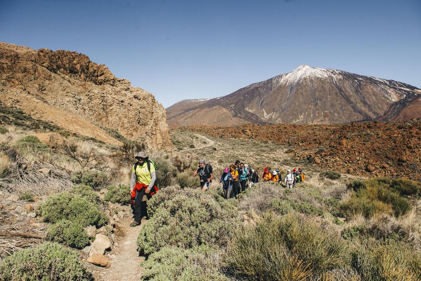 Tenerife Walking Festival - Wanderung Parador