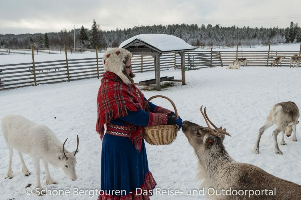 Levi in Lappland - Ounaskievari Rentierfarm