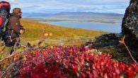 Ut på tur, aldri sur – Wandernd unterwegs im herbstlichen Lappland… Die Morgensonne steigt langsam über die Hügel empor, die meinen Lagerplatz umgeben. Schon durch das dünne Nylon hindurch spüre […]