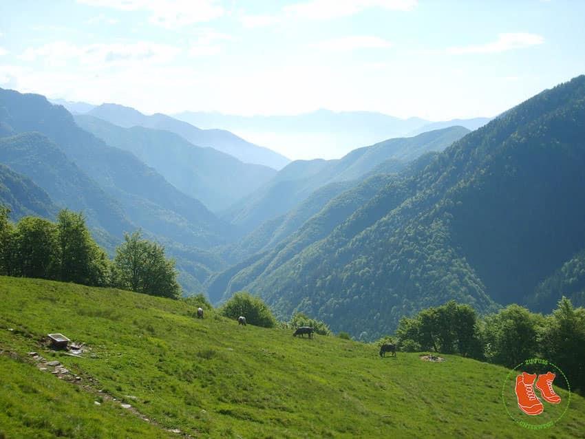 ZuFussunterwegs_com - Das ungestueme Valle Onsernone