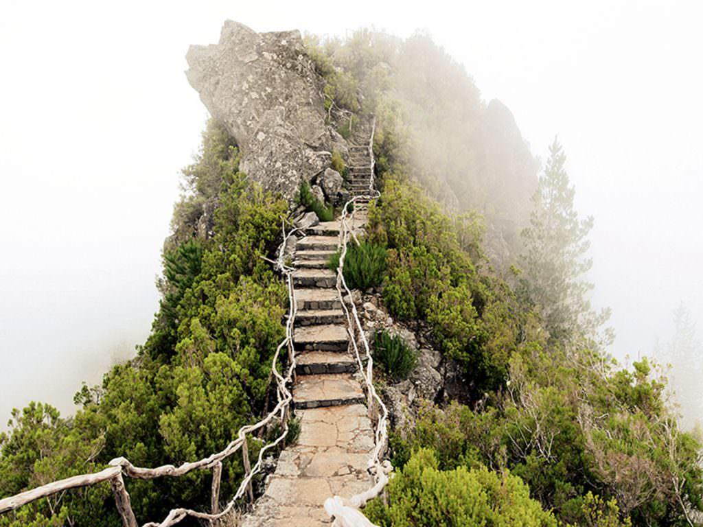 ASI Reisen - Madeira
