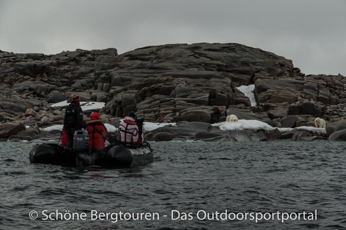 Spitzbergen - Zwei Eisbaeren