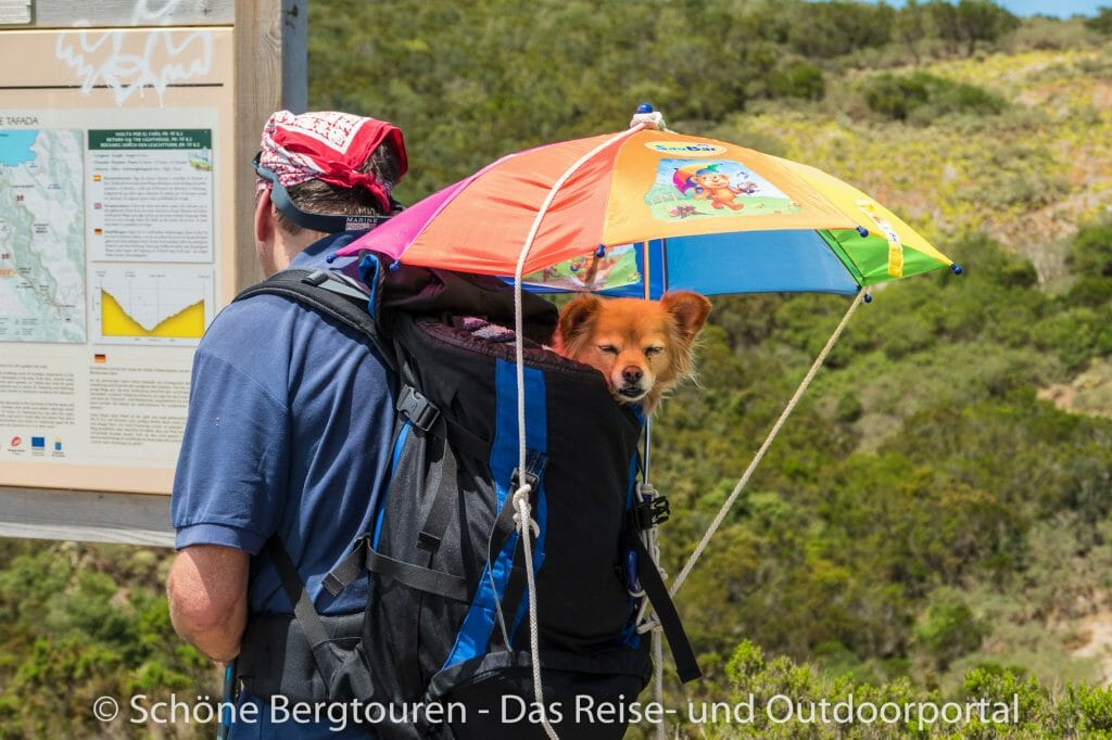 Teneriffa - Rucksack mit Hund