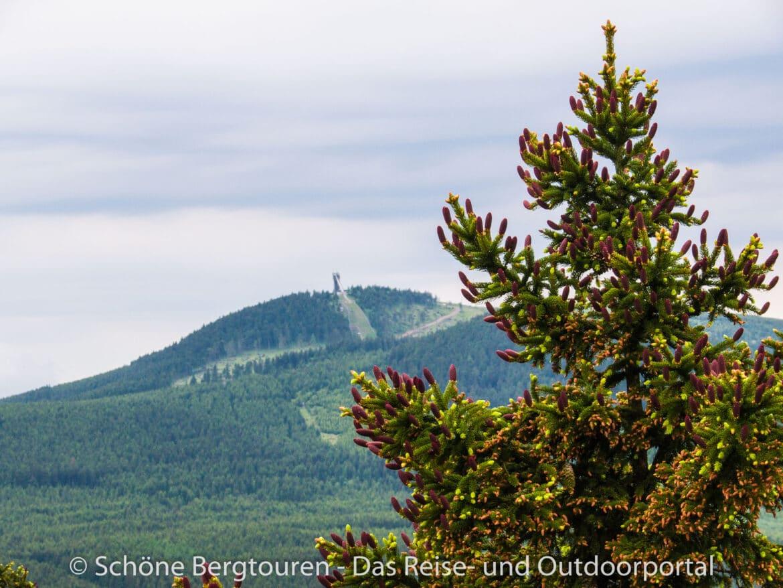Harz - Blick zum Wurmberg