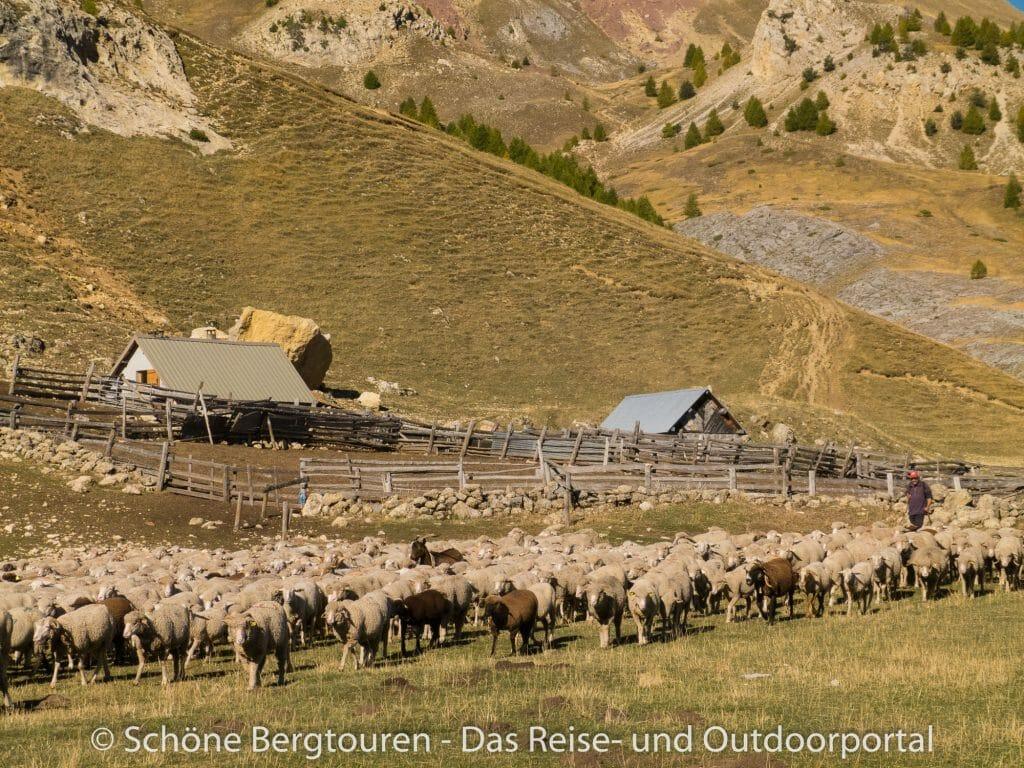 Hautes-Alpes - Schaeferhuette