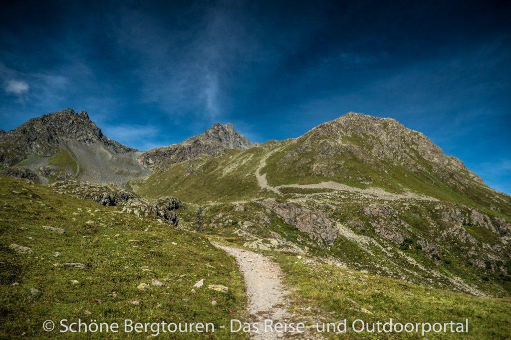 Via Valtellina - Gruene Wiesen