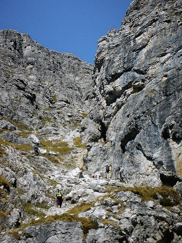 Wanderbuch Bregenzerwald - Alpiner Steig am Widderstein