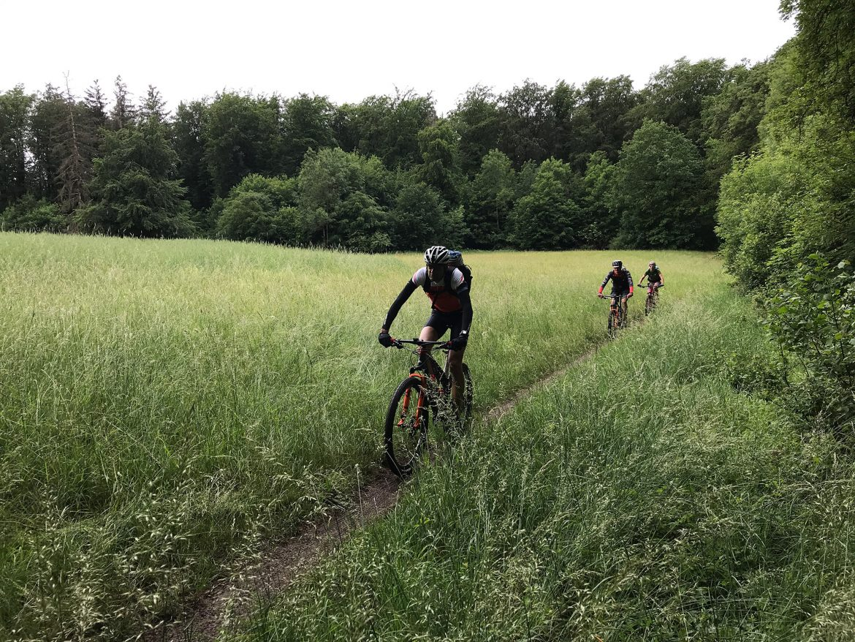 BergaufBergab - Auf Schleichwegen in ihrer fraenkischen Heimat