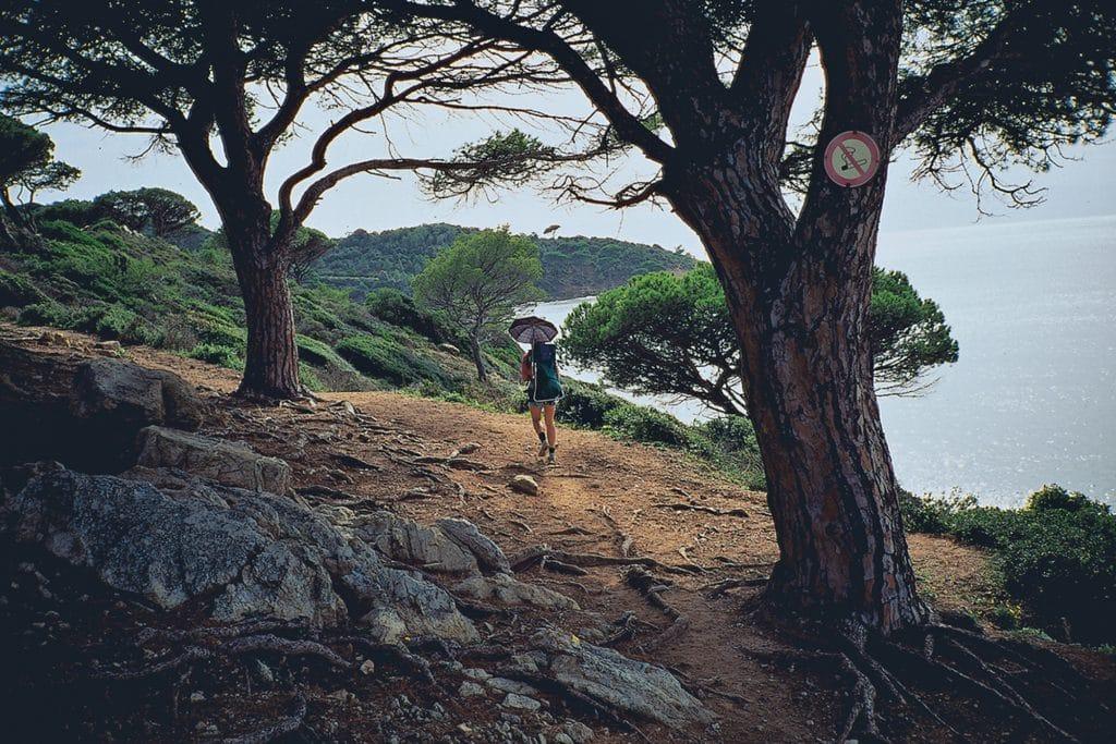 Cote d Azur - Cap Lardier