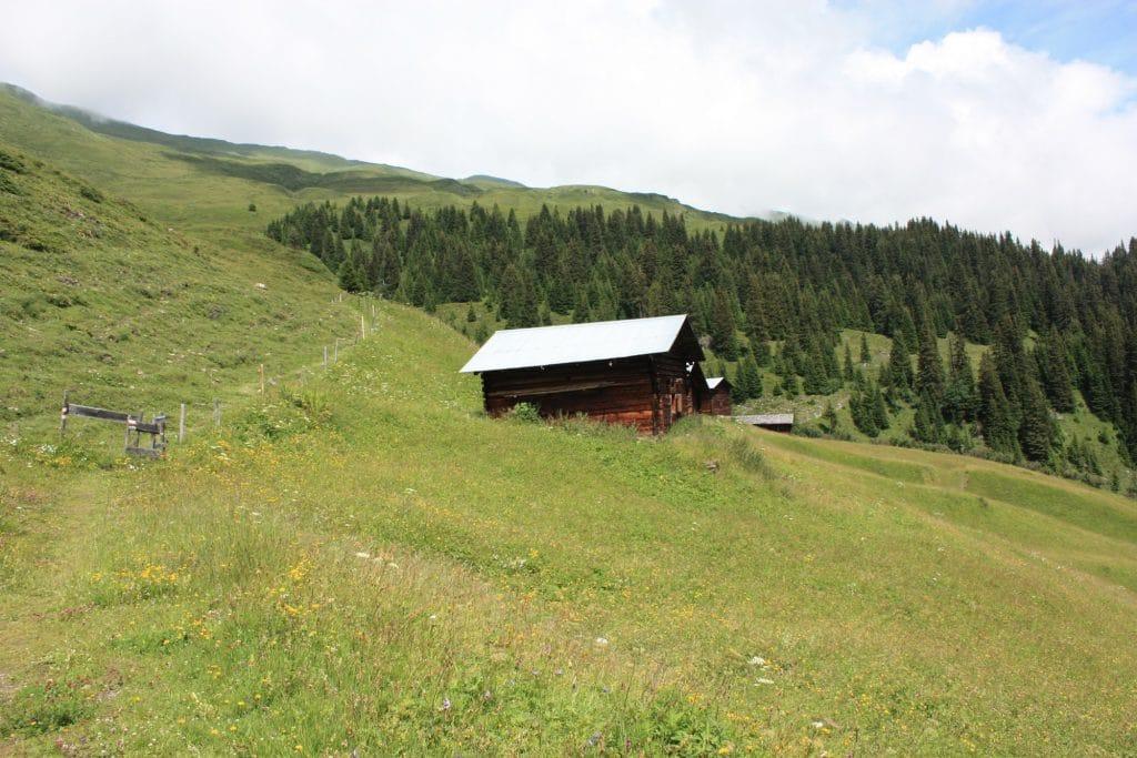 Walserweg - Aufstieg zur Camaner Huetta