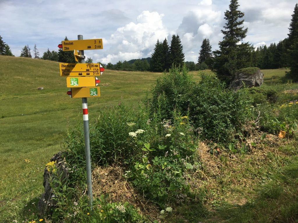 Walserweg - Bei Samest